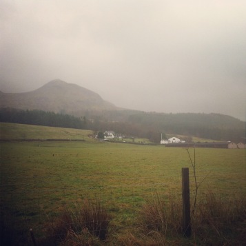 a soggy trot past Dumgoyne with a gannet