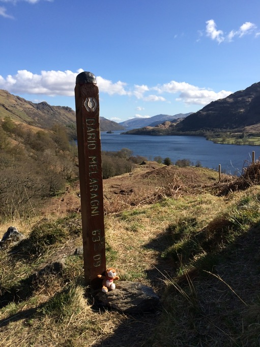 Dario's post on the West Highland Way. The very top of Loch Lomond looking south.