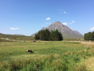 The mighty Buachaille Etive More, Glencoe. I ran 40 miles the day before and had 20 to go. I had no idea just how hot it was going to be.
